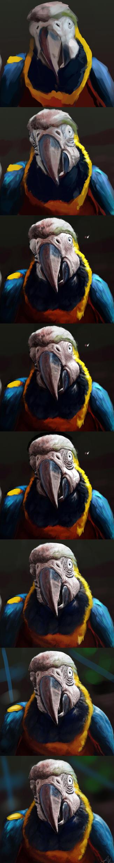 Photo Study: Macaw Steps by TwoDD