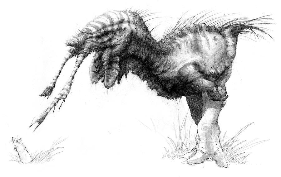 RK-2181 sketch by LindseyWArt