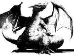 Charizard Black and White