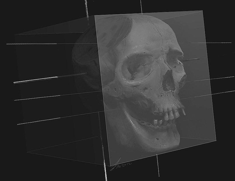 Boxed Skull / Skull Box by TwoDD