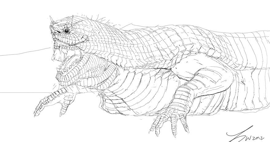 Snake Hybrid Sketch by LindseyWArt