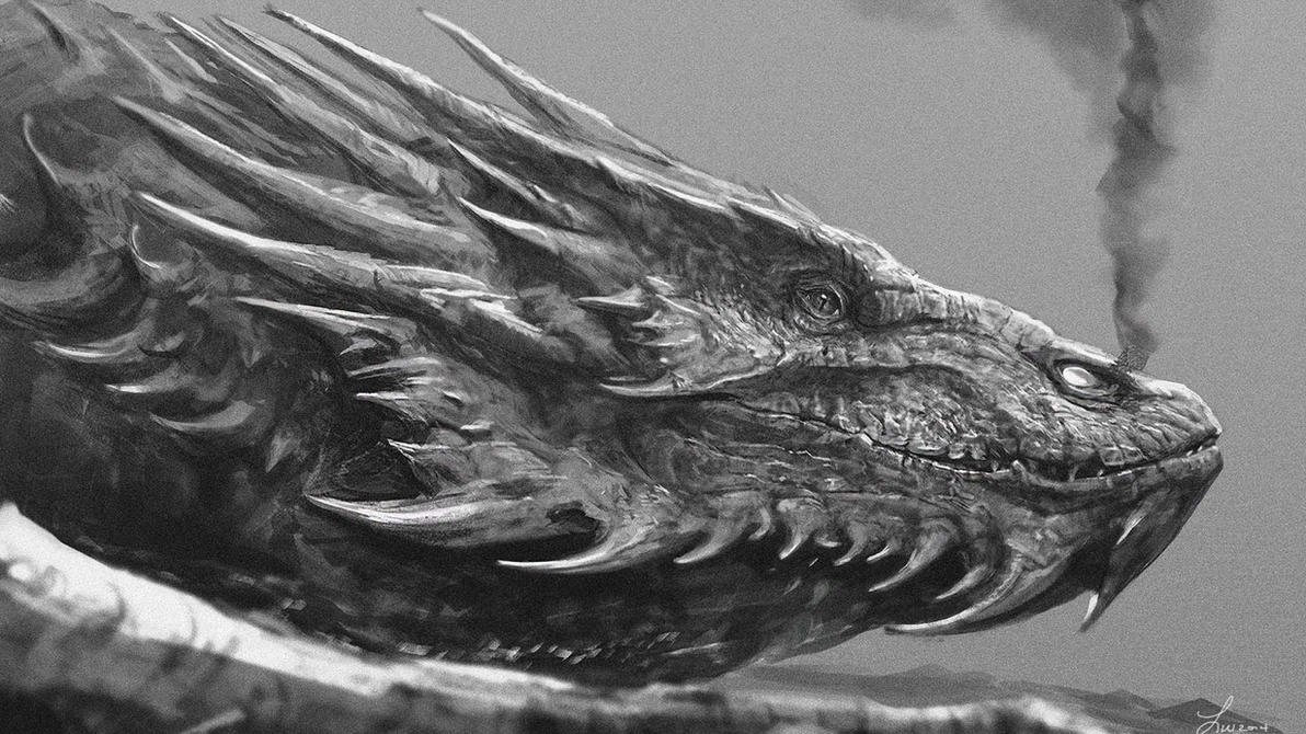 Smaug Wallpaper by TwoDD