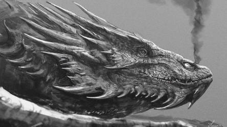 Smaug Wallpaper by LindseyWArt