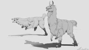 Llama Raptor