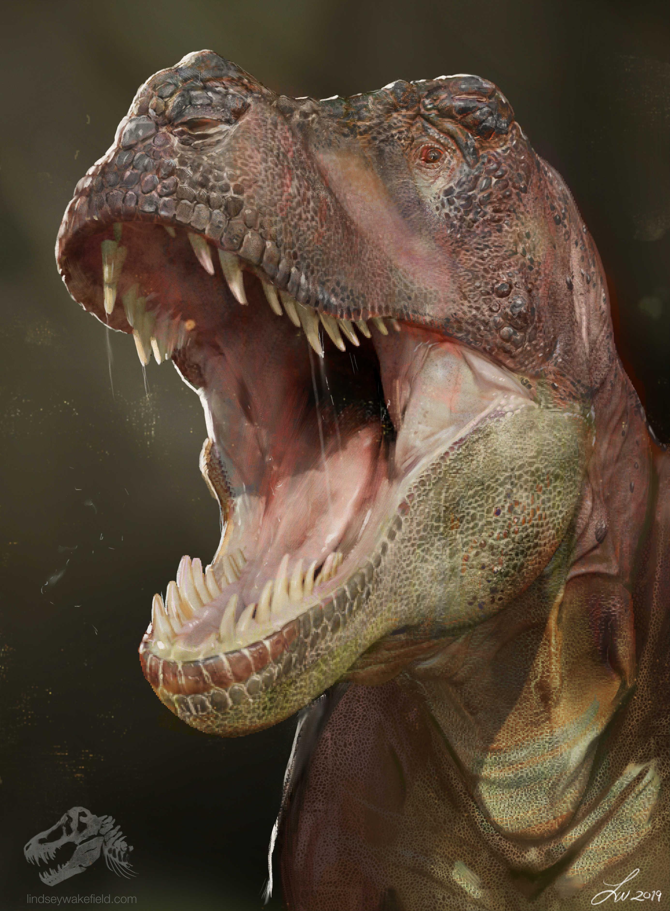 Tyrannosaurus Rex 2019