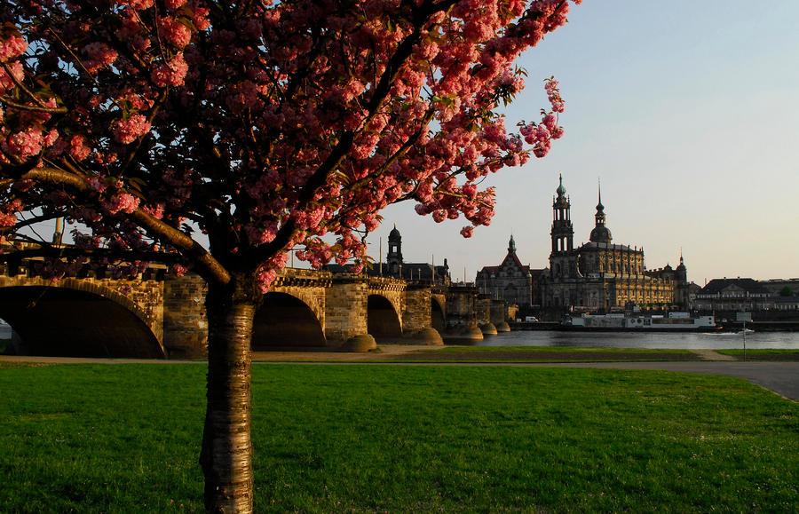 Dresden Altstadt... by EricReynolds