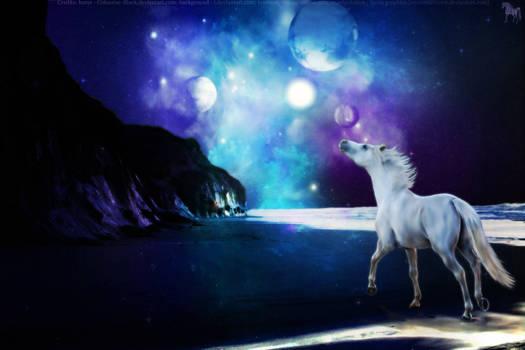 Arabian Horse on Space Beach