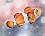 Clownfish by GunterAngriff