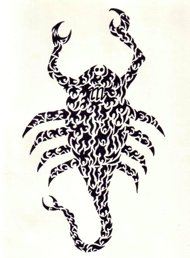 75 Best Scorpion Tattoo Designs amp Meanings  Self