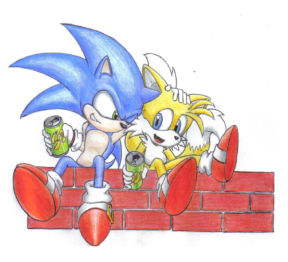 Sonic and Tails...Friends forever by Zero-White-tiger