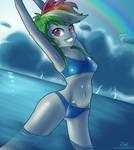 Summer of Rainbow