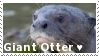 Giant Otter - Stamp by Ehlinn