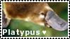 Platypus - Stamp by Ehlinn