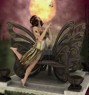 Butterfly Dance