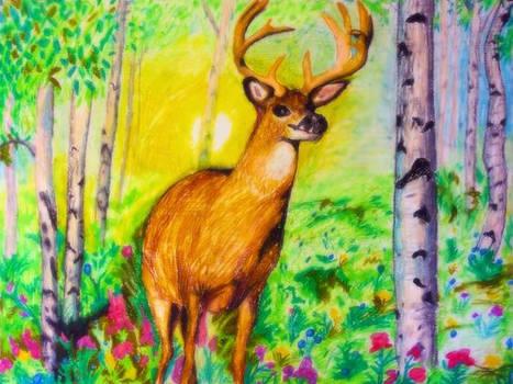 Deer-in-forest-pastel