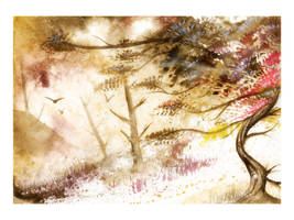 Winds of change by Jay-Allen-Hansen