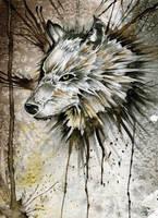 Wolf Head by Jay-Allen-Hansen