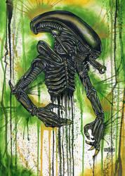 The Xenomorph