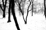 CP Snowscape by parisienne-in-ny