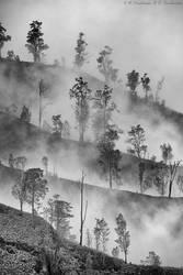 Fog over Kawah Ijen by Dark-Raptor