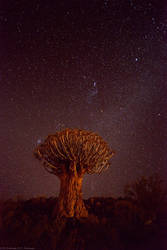 Night sky over Namibia