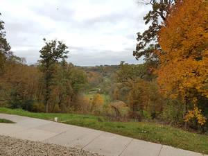 Fall in Lewiston