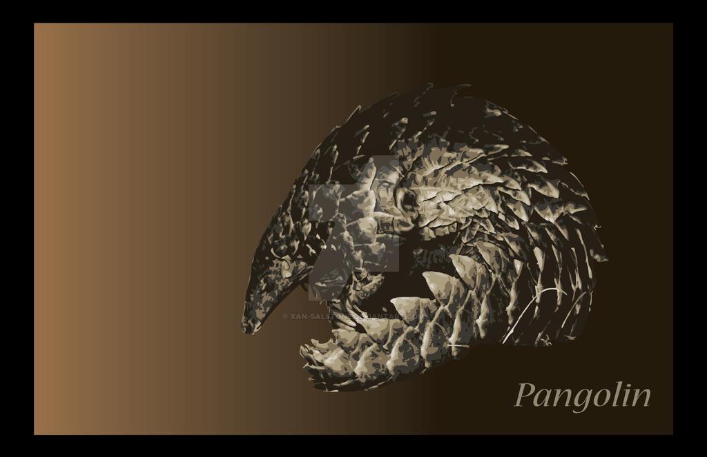 Pangolin by Xan-Salstone