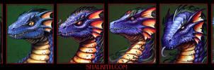 Blue Dragon Age Progression