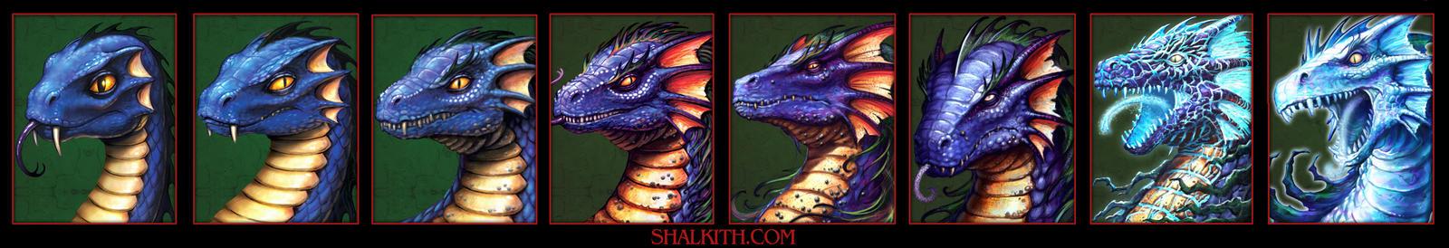 Blue Dragon Age Progression by VegasMike