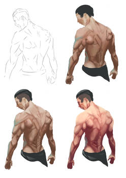 Back Muscles - Study by ofou