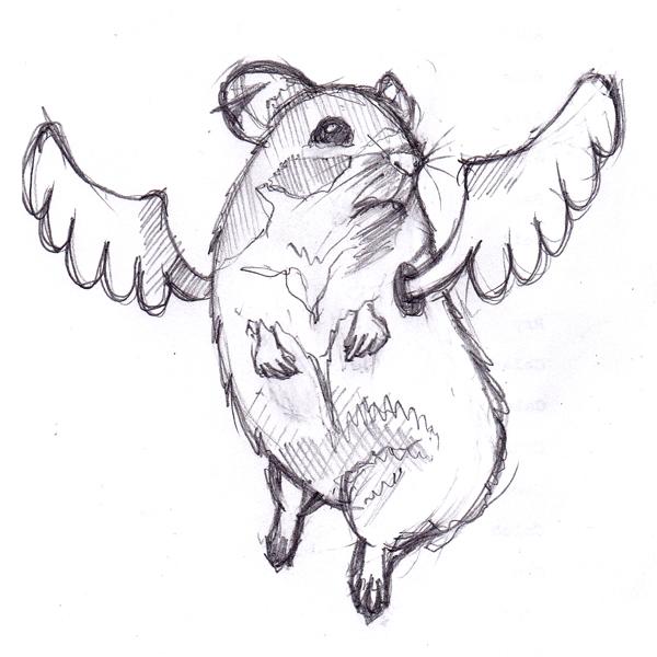 Flying Hamster Sketch by daskull on DeviantArt