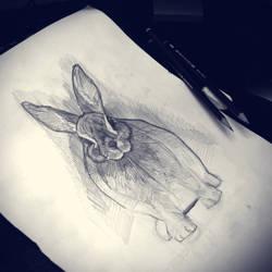bunny sketch by daskull