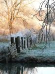 Winter feeling by Dai361