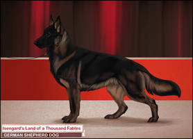 Royal Canin- Majviva by Runestorm-kennel