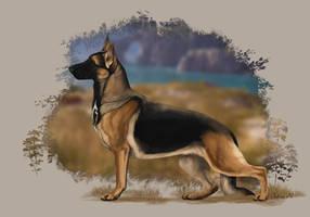 Runestorm's Aywin LaRue by Runestorm-kennel