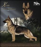 Runestorm's Kalih Stormaire BH AD by Runestorm-kennel