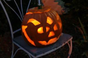 Pumpkin by blakrosebleedinheart