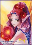 ACEO 5 : Red Gerbera Daisy