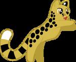 Cheetah Pounce