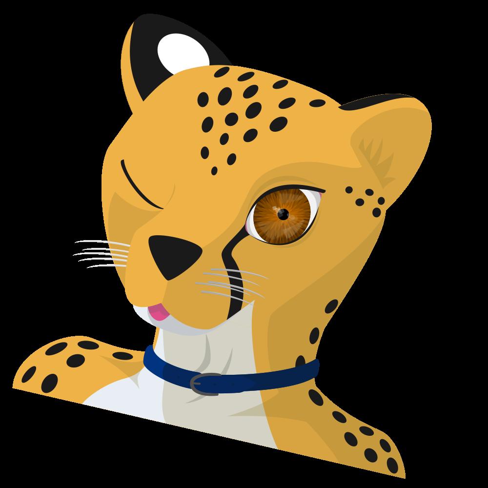 Cheetah Wink