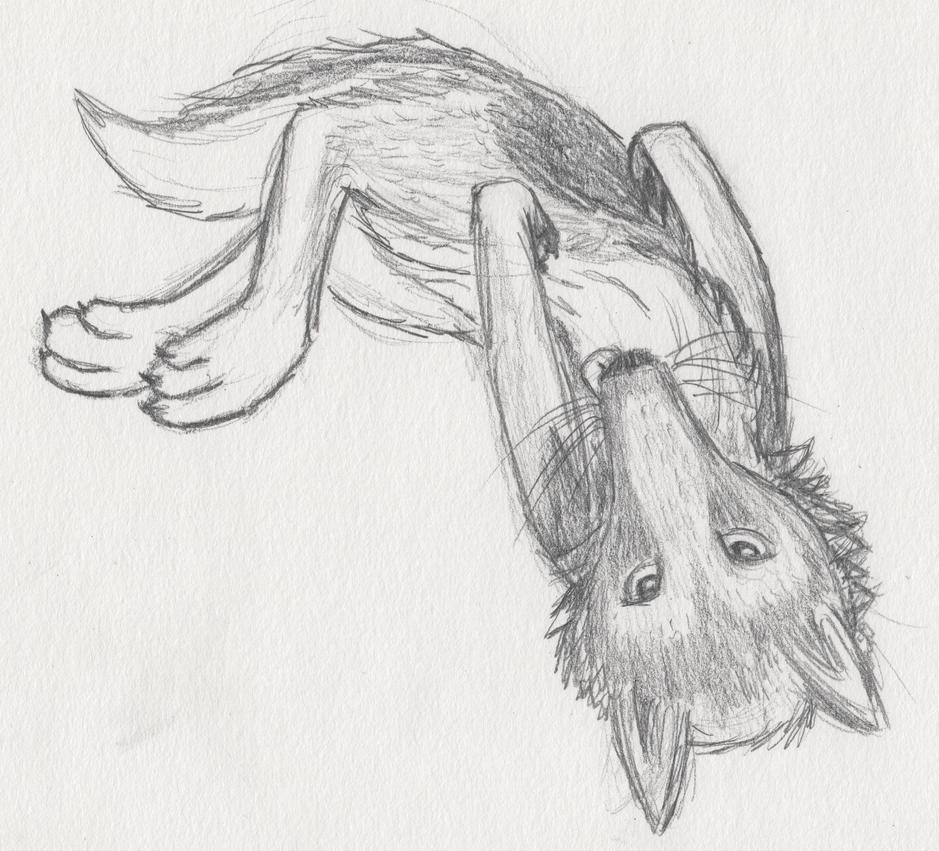 Doggo Sketch by mattyhex