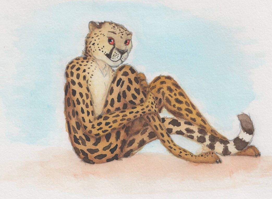 Sitting Cheetah by mattyhex