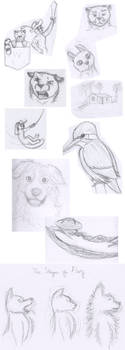 Sketchbook Excerpts 2 by mattyhex