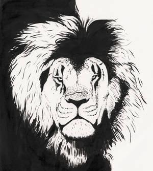 Inky Lion