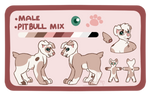 Canine Adopt Auction - OPEN