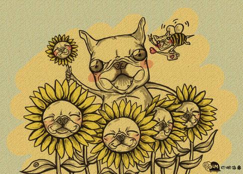 doggie sunflowers