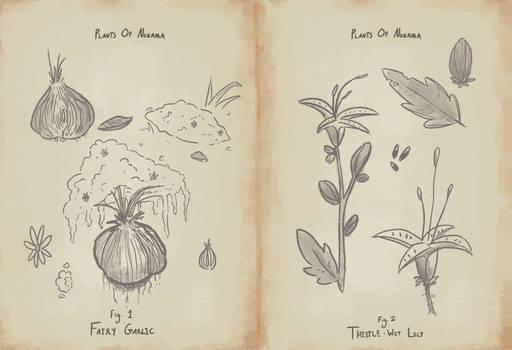 Plants of Nozama Page 1