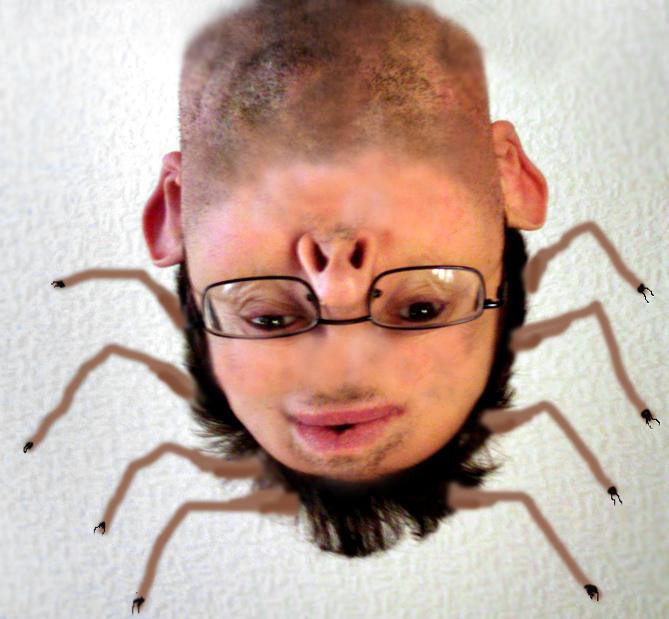 fc08.deviantart.net/fs50/f/2009/311/0/8/Spiderman_ID_by_Stumm47.jpg