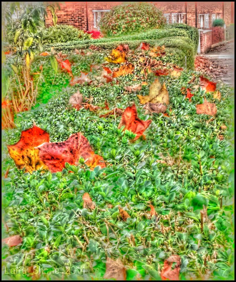 Autumn Marks by Stumm47