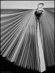 Fan III by Stumm47